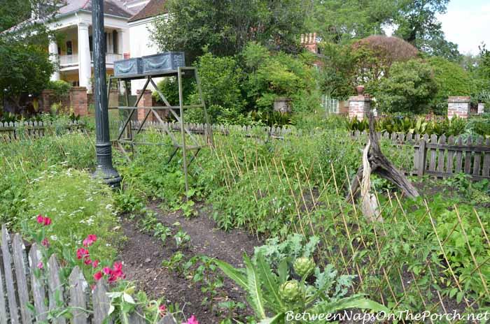 Houmas House Plantation Gardens 16