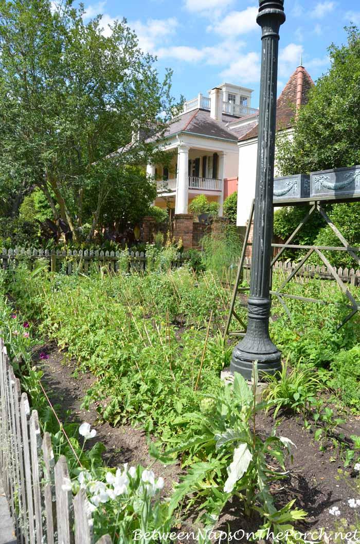Houmas House Plantation Gardens 19