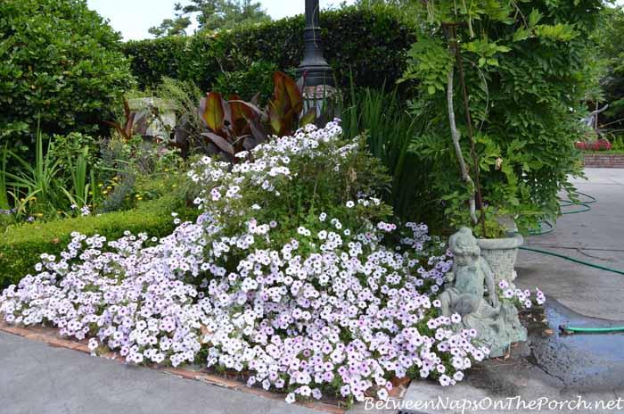 Houmas House Plantation Gardens 23