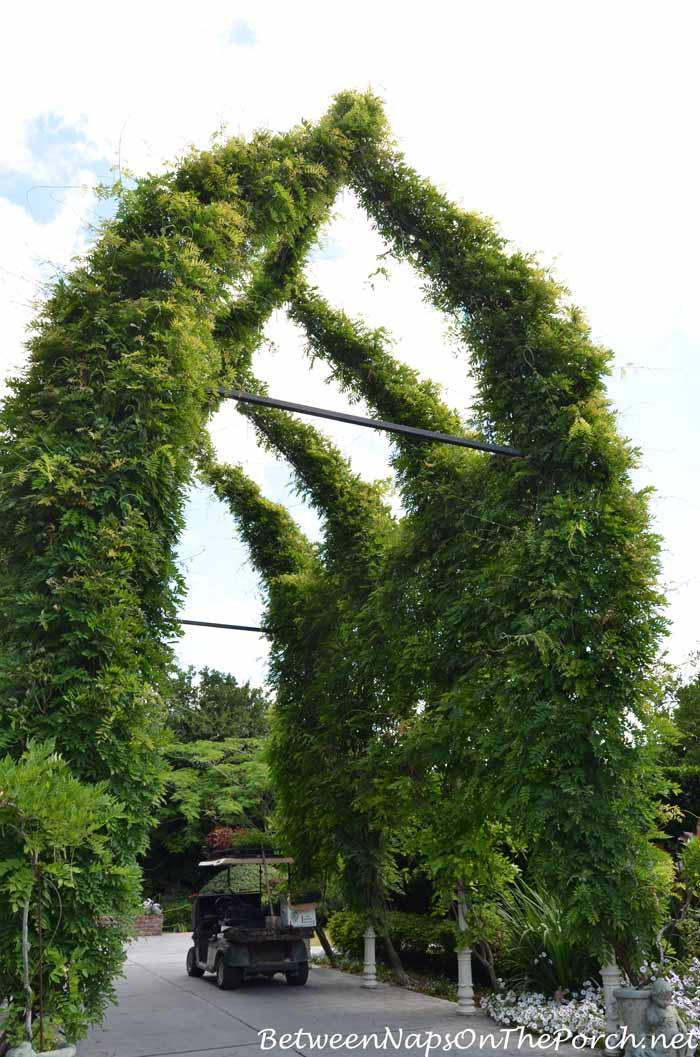 Houmas House Plantation Gardens 27