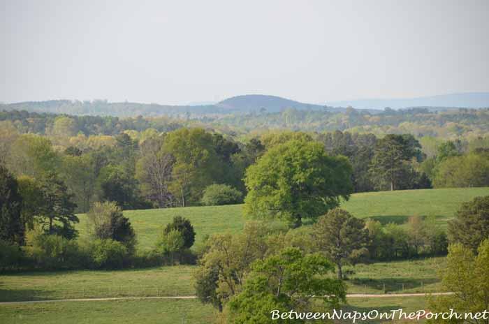 Scenes From The Farm 15_wm