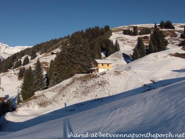 Ski Cabin in Switzerland 3_wm