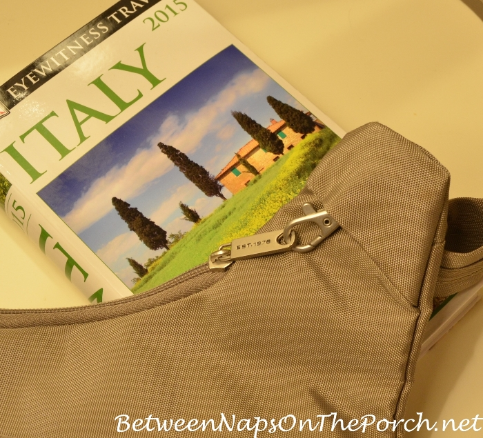 Best Purse for Traveling to Europe
