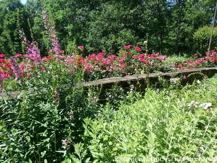 Gardens in Gibbs Gardens, Ballground GA