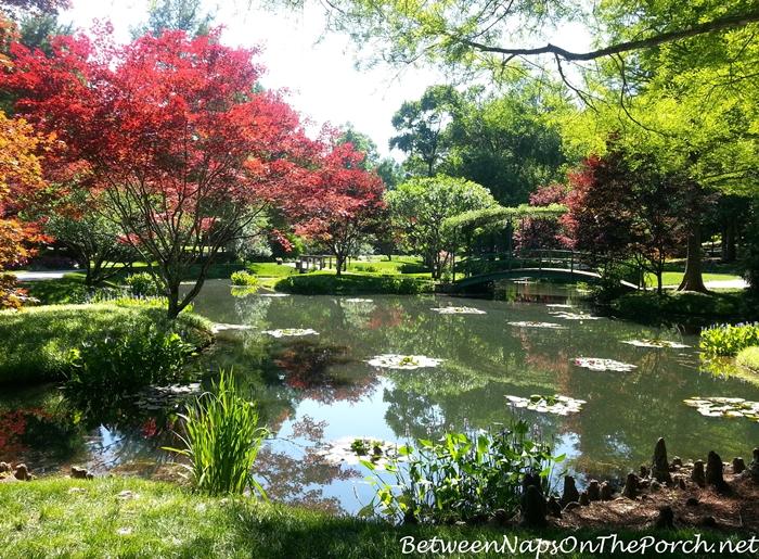 Pond with Monet Bridge in Gibbs Gardens, Ballground Georgia