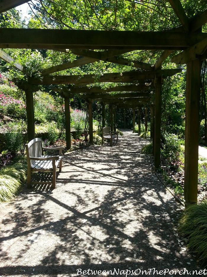 Strolling under the Rose Arbor in Gibbs Gardens
