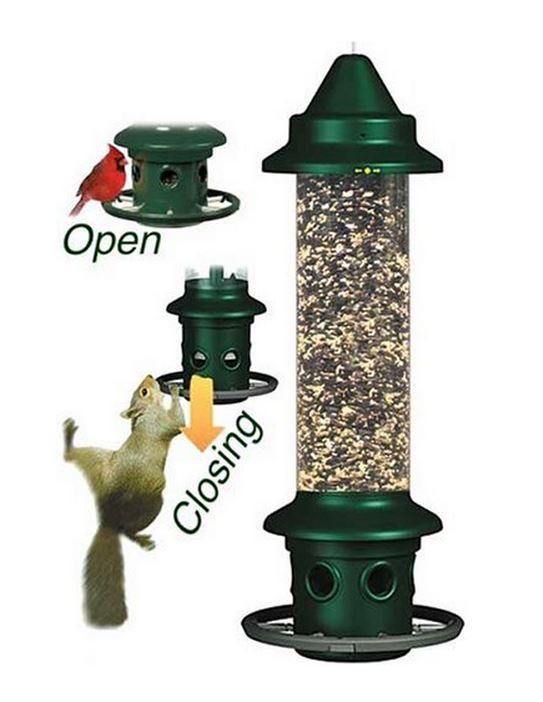 Brome Squirrel Buster Bird Feeder