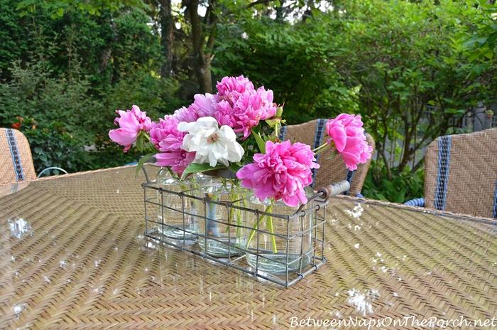 Martha Stewart Oleander Outdoor Furniture for Dining