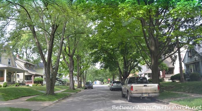 Older Neighborhood with Tree-Lined Street