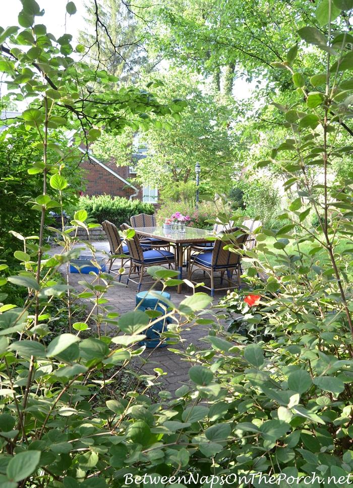 Secret Garden With Martha Stewart Oleander Collection