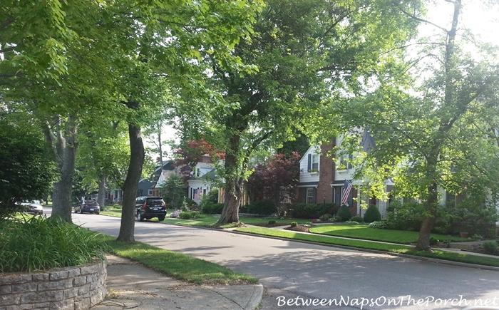 Tree Lined Streets in Beautiful Older Neighborhoods
