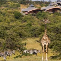 Video Walk Around Mahali Mzuri, Richard Branson's Safari Camp in Kenya
