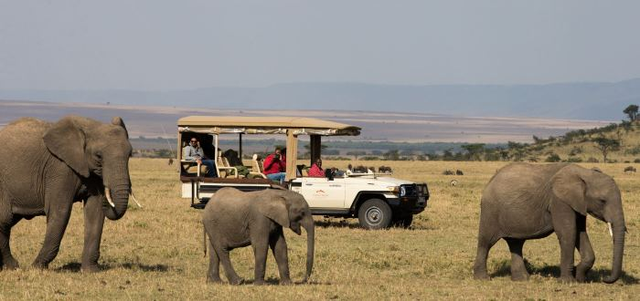 On Safari at Mahali Mzuri in Africa