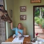 Breakfast with Daisy and Giraffe Kisses