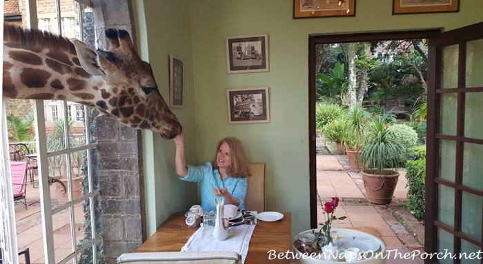 Breakfast with Daisy at Giraffe Manor, Kenya
