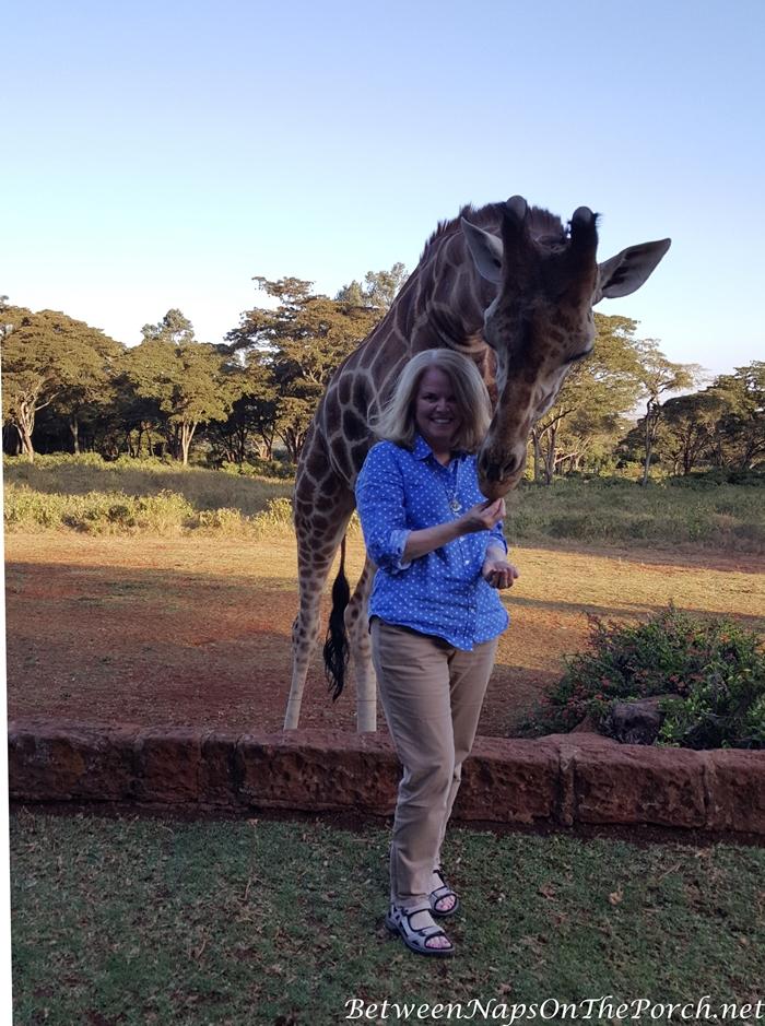 Feeding Giraffes at Giraffe Manor