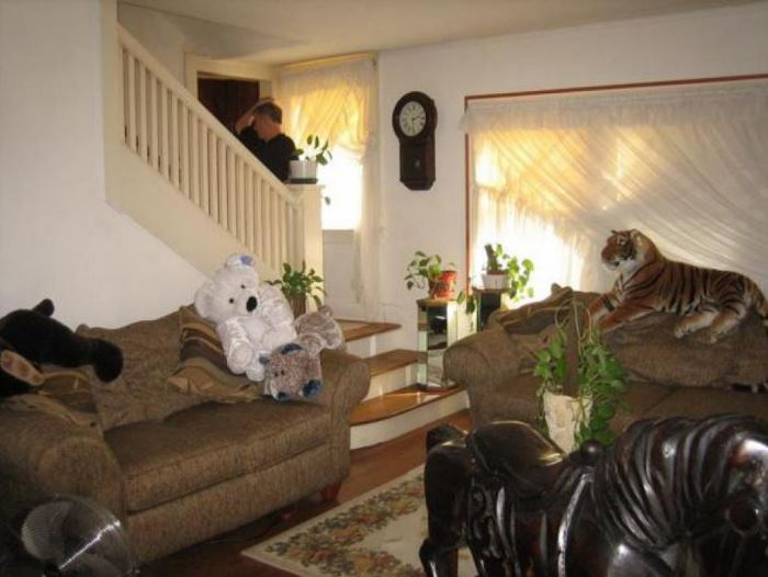 Nightmare on Elm Street House Living Room Before Renovation
