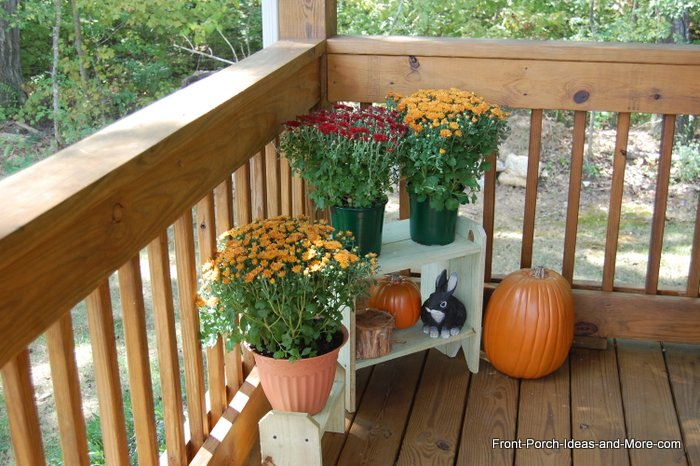 Chrysanthemums for the Autumn Porch