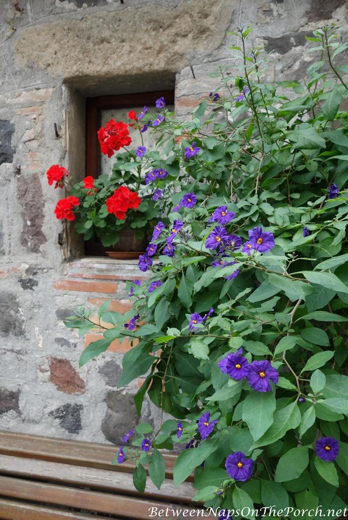 Radicofani, Orcia Valley, Italy 09