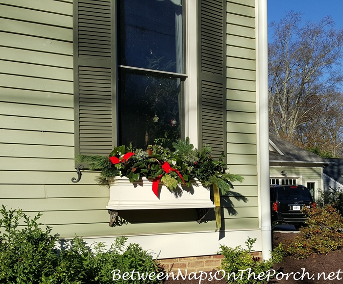 Decorate Window Boxes for Christmas