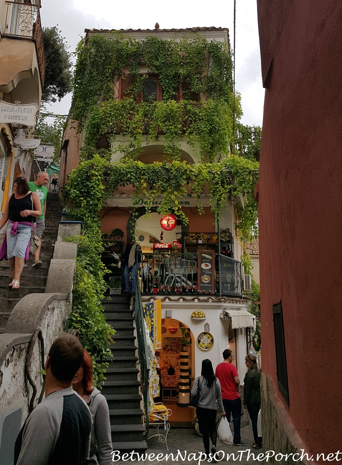 Positano Vine-Covered Store