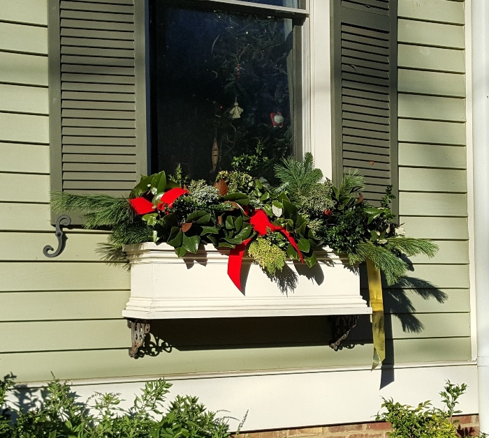 Window Box Decorated for Christmas