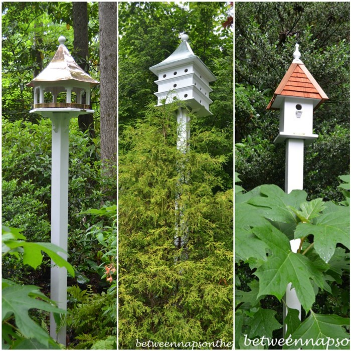 Lazy Hill Birdhouses and Feeder in the Garden