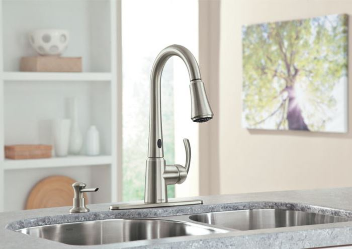 Some Kitchen Updates: A Moen MotionSense Faucet and Soap ...