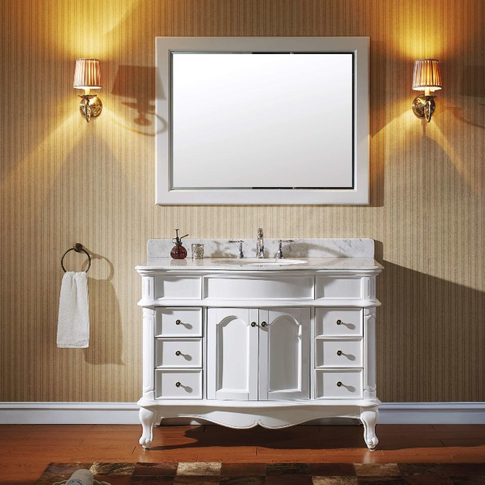 Norhaven 48 Inch Vanity with Mirror