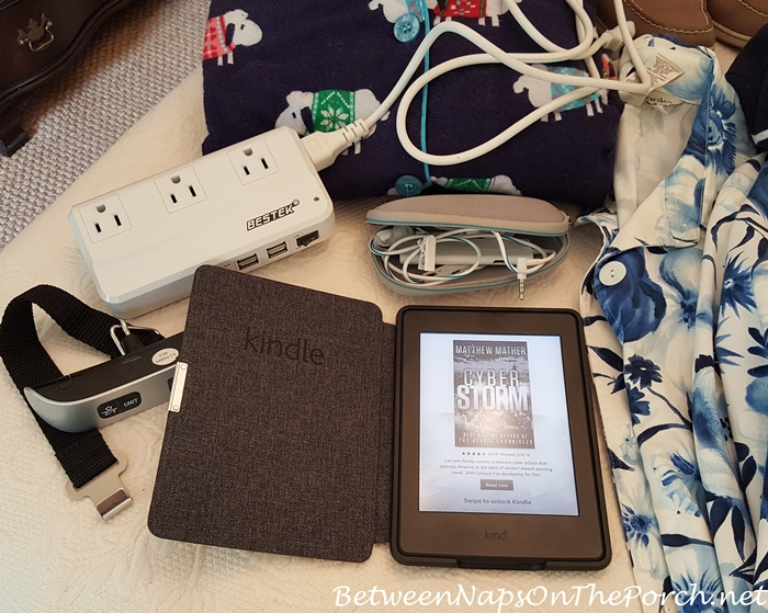 Kindle, Bose Noise-Canceling Headphone and Power Converter for Travel