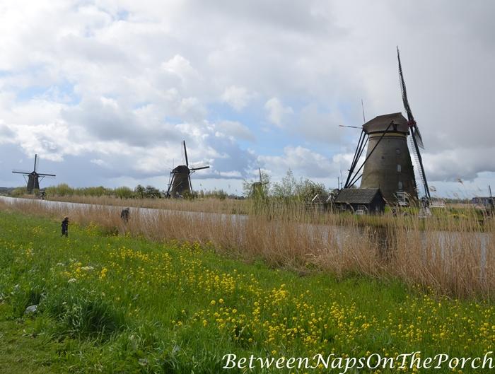 Windmills, Kinderdijk, Holland
