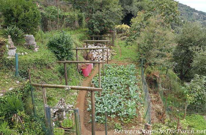 Garden, Anacapri