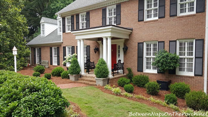 Boxwood Shrubs, Traditional Landscape