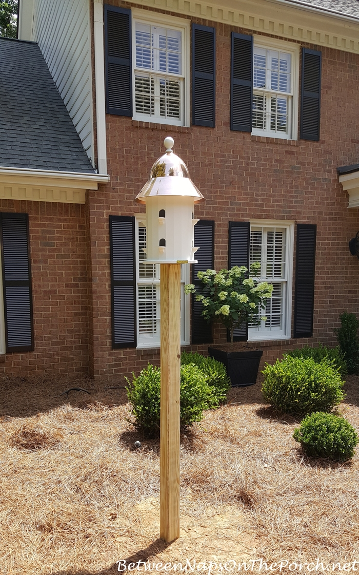 Lazy Hill Farm Dovecote Bird House with Copper Roof