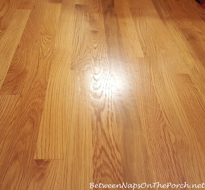 Shadows left on hardwood flooring from deteriorated latex backing on rug