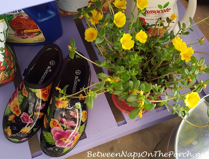 Sloggers Garden Shoes