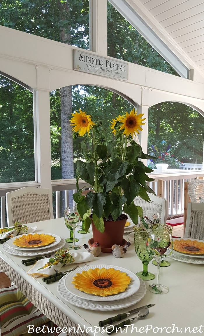 Sunflower Table Setting on Screened Porch