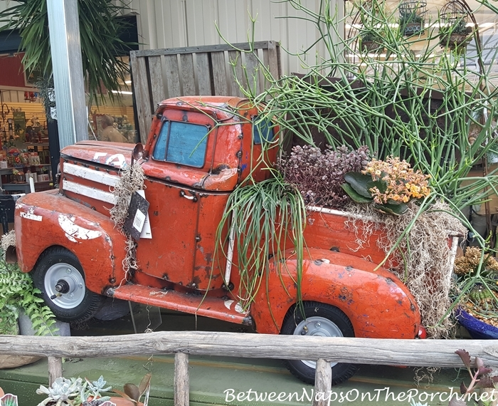 Whimsical Planter & Yard Art for Garden
