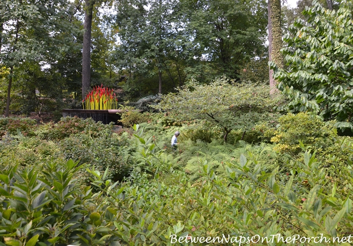 atlanta-botanical-garden-chihuly-in-the-garden-19