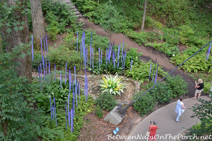 atlanta-botanical-garden-chihuly-in-the-garden-20
