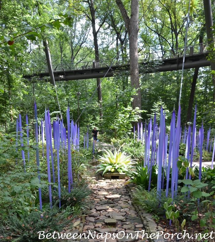 Atlanta Botanical Garden Storza Woods: Chihuly In The Garden, Atlanta Botanical Garden, 2016