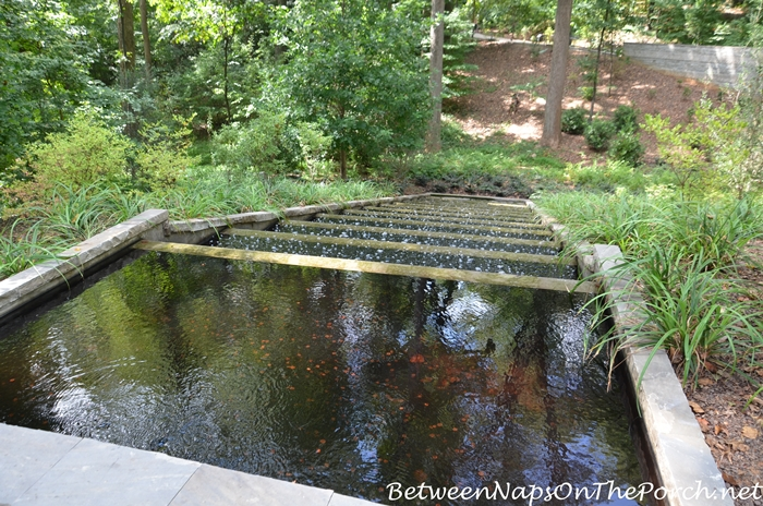atlanta-botanical-garden-chihuly-in-the-garden-25