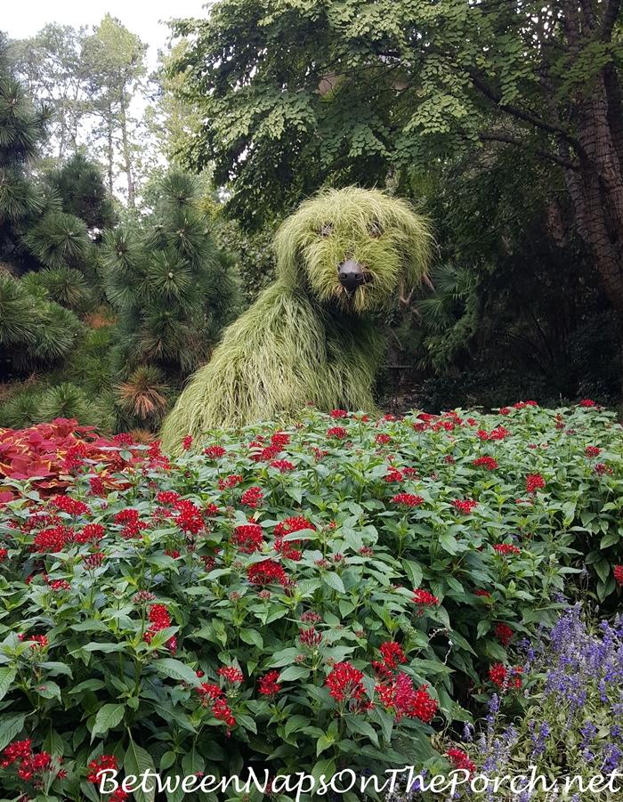 Chihuly In The Garden Atlanta Botanical Garden 2016