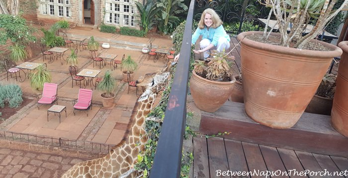 daisy-room-balcony-giraffe-manor