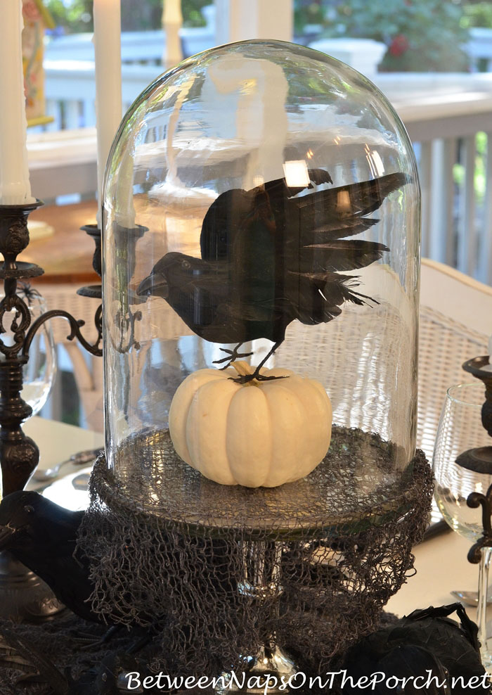 crow-pumpkin-centerpiece-under-domed-cloche