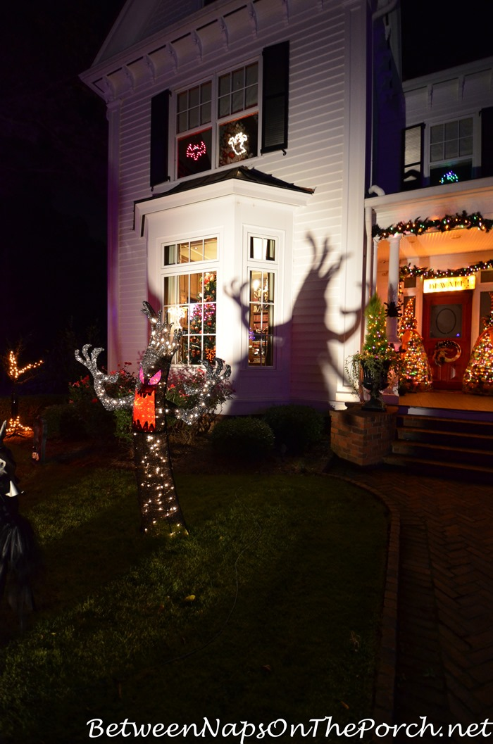 scary-tree-casts-shadows-on-the-wall-halloween-decor