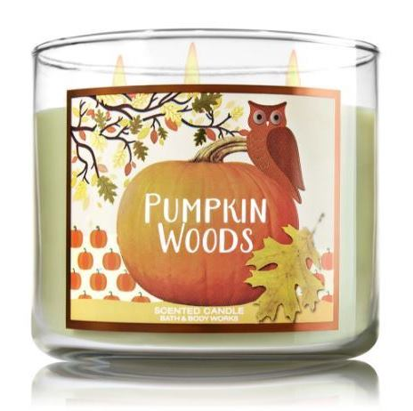 pumpkin-woods-candle-3-wick
