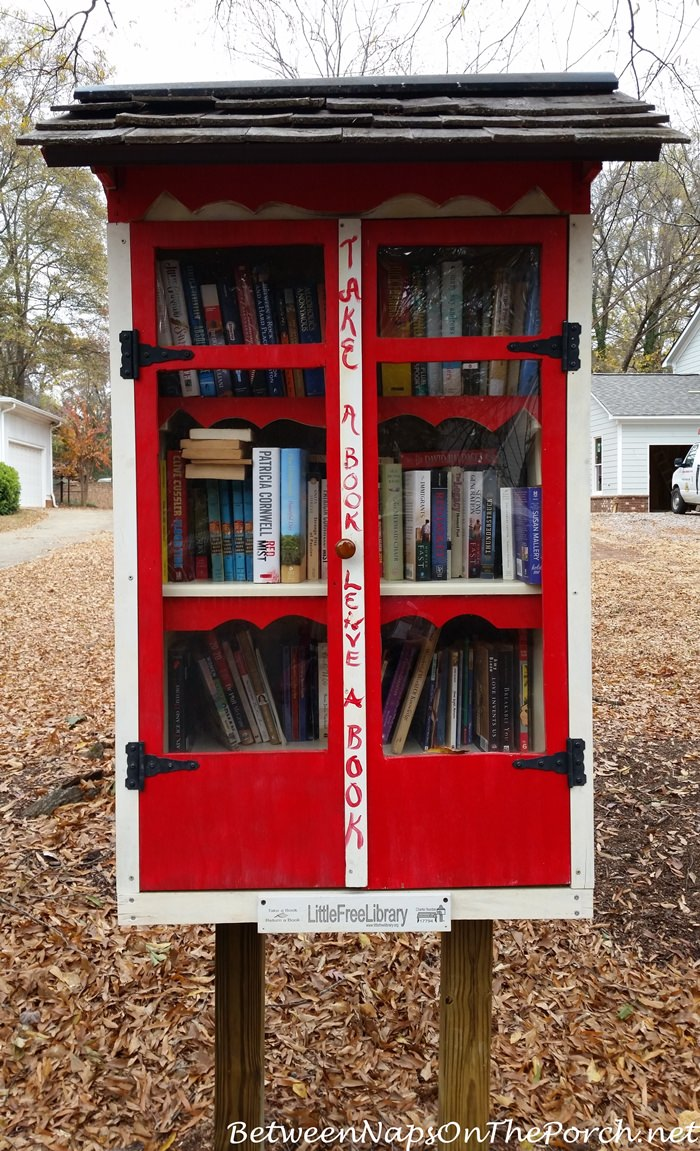 large-size-little-free-library-neighborhood-library