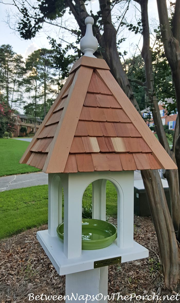 Lazy Hill Designs Loretta Bird Feeder, Use for Mealworms