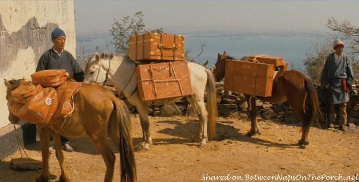 Safari Luggage in movie, The Darjeeling Limited